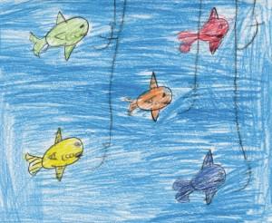 fish liam 7